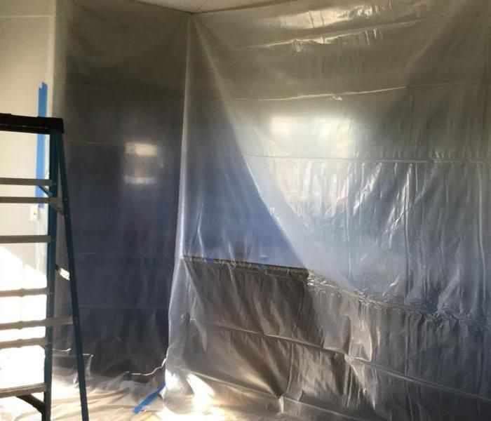 How to keep mold from spreading? After