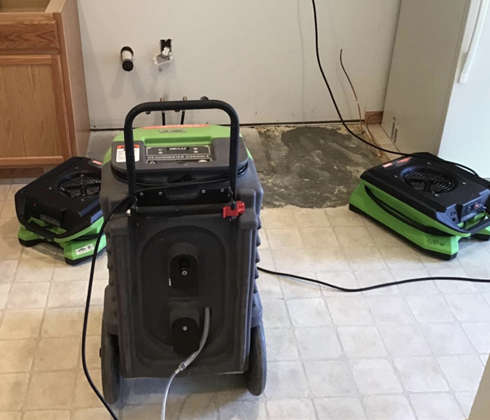 green drying equipment on the kitchen floor