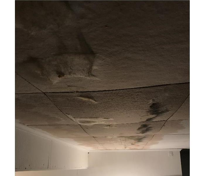 How to keep mold from spreading? Before