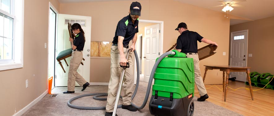 St Michael, MN cleaning services